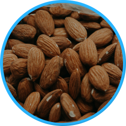 almond paste nut products